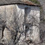 5770_Burgasé (Sobrarbe Aragon)