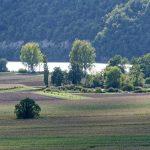 121010-2-(20) Cingle de Trémolat (Dordogne)