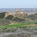 150308-Bardenas Blanca - Route de Ermitage del Yugo à Arguedas (16)