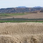 150308-Bardenas El Plano - Piste Lac del Ferial à Ermitage del Yugo (41)