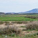 150308-Bardenas El Plano - Piste Lac del Ferial à Ermitage del Yugo (44)