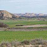 150308-Bardenas El Plano - Piste Lac del Ferial à Ermitage del Yugo (47)