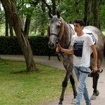150702-Dax Courses de chevaux (110)