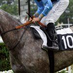 150702-Dax Courses de chevaux (123)_2