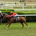 150702-Dax Courses de chevaux (132)