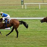 150702-Dax Courses de chevaux (133)