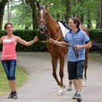 150702-Dax Courses de chevaux (142)