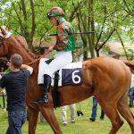 150702-Dax Courses de chevaux (152)