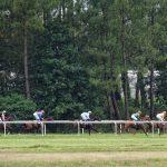 150702-Dax Courses de chevaux (155)