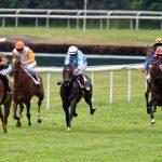 150702-Dax Courses de chevaux (157)