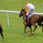 150702-Dax Courses de chevaux (162)
