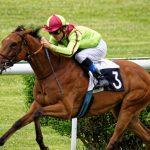 150702-Dax Courses de chevaux (186)