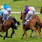 150702-Dax Courses de chevaux (188)