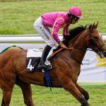 150702-Dax Courses de chevaux (190)_1