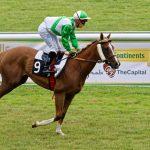 150702-Dax Courses de chevaux (194)