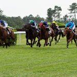 150702-Dax Courses de chevaux (201)