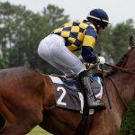 150702-Dax Courses de chevaux (209)