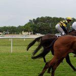 150702-Dax Courses de chevaux (210)