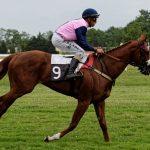 150702-Dax Courses de chevaux (212)_3