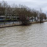 160212-Bordeaux - Crue de la Garonne (26)