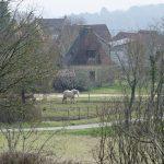 160318-Cazenac (Périgord noir) (16)