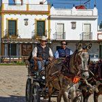 160409-El Rocio (Andalousie) (1006)