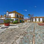 160414-Isla minima - Escobar (Andalousie) (42)