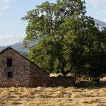 160627-Sous Aïnsa (Vallée de l'Ara (Sobrarbe-Aragon) (15)