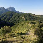 160628-Tella (La montagne dorée) (Sobrarbe-Aragon) (100)