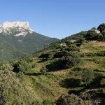 160628-Tella (La montagne dorée) (Sobrarbe-Aragon) (107)