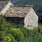 160628-Tella (La montagne dorée) (Sobrarbe-Aragon) (181)
