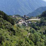 160628-Tella (La montagne dorée) (Sobrarbe-Aragon) (208)