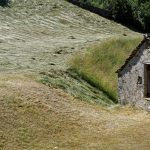 160628-Tella (La montagne dorée) (Sobrarbe-Aragon) (240)