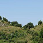 160628-Tella (La montagne dorée) (Sobrarbe-Aragon) (241)