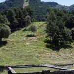 160628-Tella (La montagne dorée) (Sobrarbe-Aragon) (256)