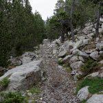 160630-De Saravillo à Ibon de Plan (Sobrarbe-Aragon) (38).NEF