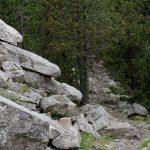 160630-De Saravillo à Ibon de Plan (Sobrarbe-Aragon) (80).NEF