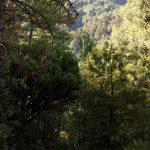 160906-Marche de Badain à El chorro y Fuentes de Fornos (Sobrarbe-Aragon) (14)