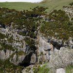 170513-Canyon d'Anisclo supérieur (Sobrarbe) (73)