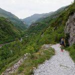 170516-Sentier de la mâture (Pyrénées atlantiques) (16)