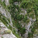 170516-Sentier de la mâture (Pyrénées atlantiques) (25)
