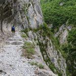 170516-Sentier de la mâture (Pyrénées atlantiques) (26)