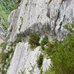 170516-Sentier de la mâture (Pyrénées atlantiques) (32)