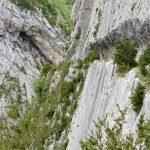170516-Sentier de la mâture (Pyrénées atlantiques) (33)