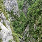 170516-Sentier de la mâture (Pyrénées atlantiques) (35)
