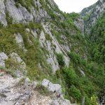 170516-Sentier de la mâture (Pyrénées atlantiques) (45)