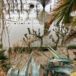 200203-(42) La Roque Gageac sous les eaux (Dordogne)