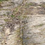 210211-(32) Marche Gorge d enfer - Erosion par les roues des charettes (Les Eyzies - Dordogne)