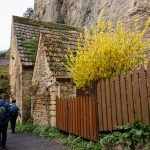 210319-Randonnée autour de Marqueyssac (Dordogne)112