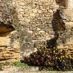 210319-Randonnée autour de Marqueyssac (Dordogne)77
